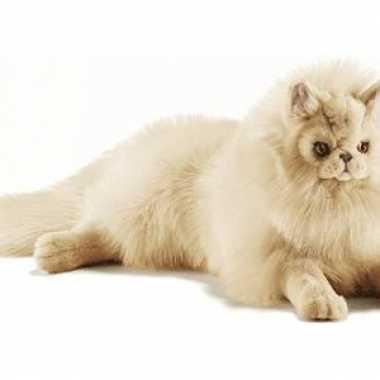 Hansa pluche perzische kat knuffel beige 70 cm