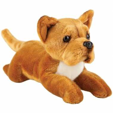 Pluche bruine staffordshire bull terrier honden knuffel 30 cm