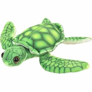 Pluche groene zeeschildpad knuffel 18 cm speelgoed