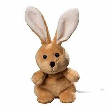 Pluche konijn/haas knuffel 19 cm met beschrijfbaar label