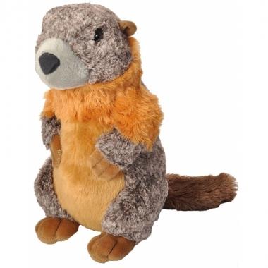 Pluche marmot knuffel 30 cm