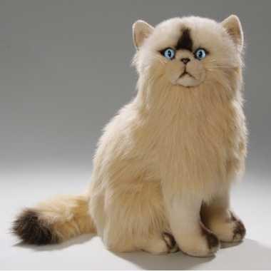 Pluche persische katten knuffel 35 cm