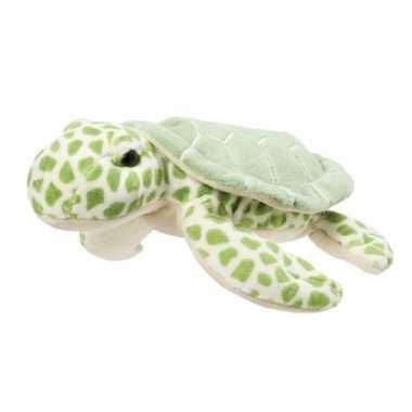 Pluche schildpad knuffel 22 cm