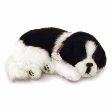 Pluche slapende border collie knuffel hond