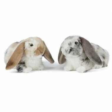 Set van 2x luxe pluche hangoor konijnen knuffels 30 cm