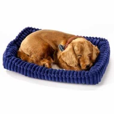 Slapende dachshund / teckel knuffel