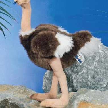 Struisvogel knuffel 30 cm