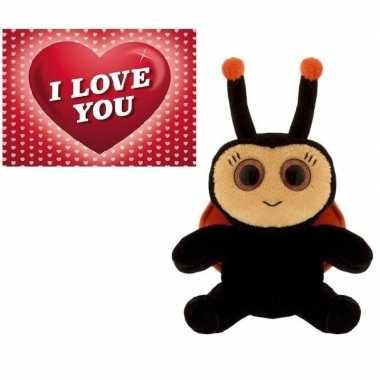 Valentijn valentijns cadeau lieveheersbeestje knuffel en valentijnskaart
