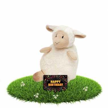 Verjaardag knuffel schaapje zittend met gratis verjaardagskaart