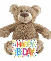 Kinder cadeau knuffelbeer met happy birthday wenskaart 10229265