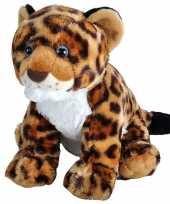 Pluche gevlekte luipaard jaguar welpje knuffel 35 cm speelgoed