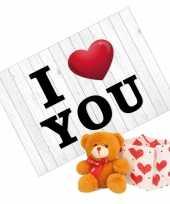 Valentijnskaart en bruine knuffelbeer met rood sjaaltje 10 cm